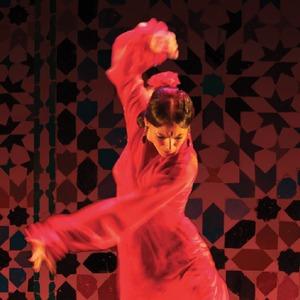Flamenco Pro Bono