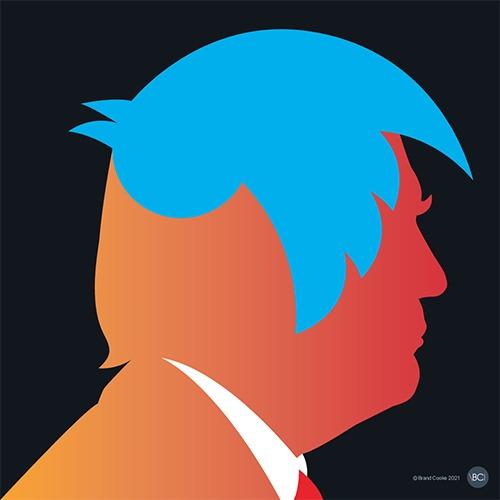 Trump Twitter Terminated